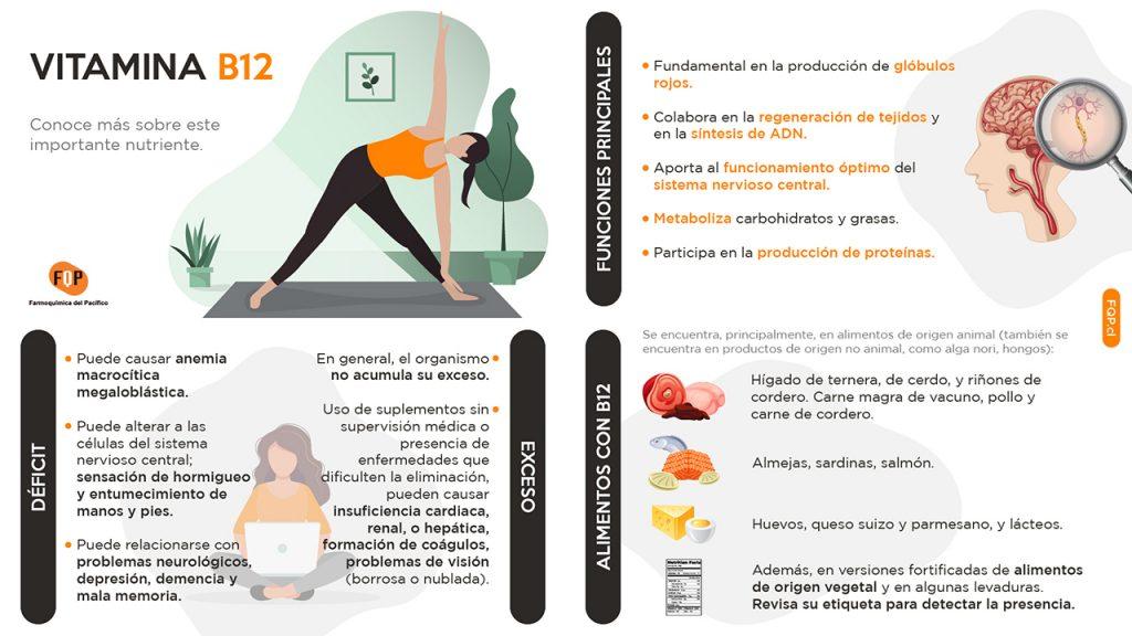vitamina b12 infografia